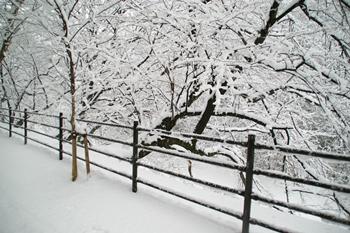 冬の防災グッズ