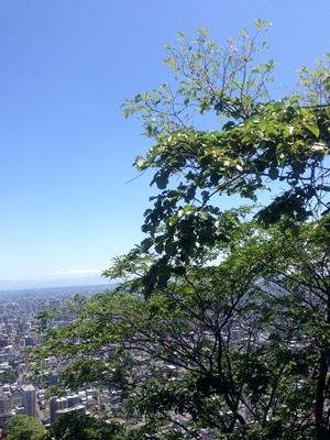 円山 お気楽低山トレッキング